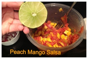 triple dip salsa cover