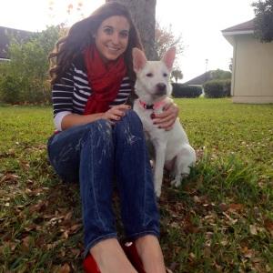 again-adopt-a-dog